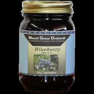 blueberry600